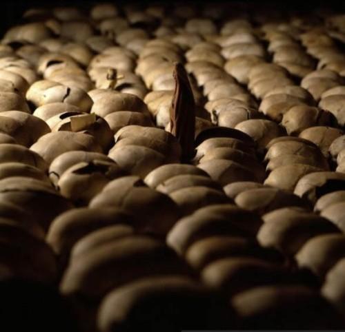Rwanda_Genocide_Memorial_1_1_
